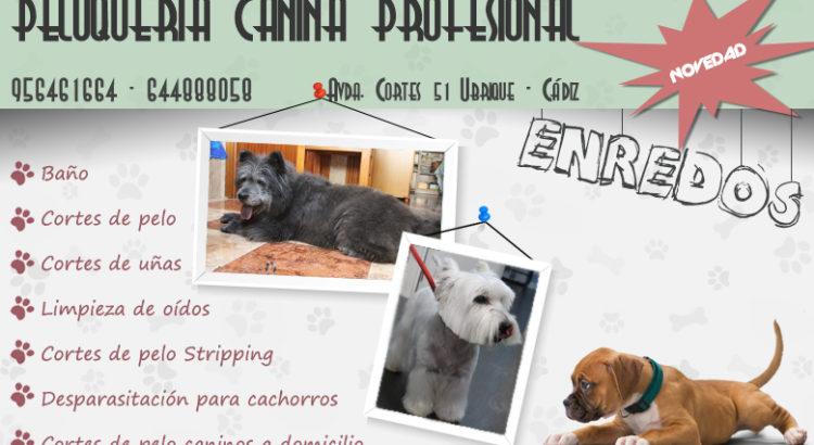 Peluquería canina Enredos