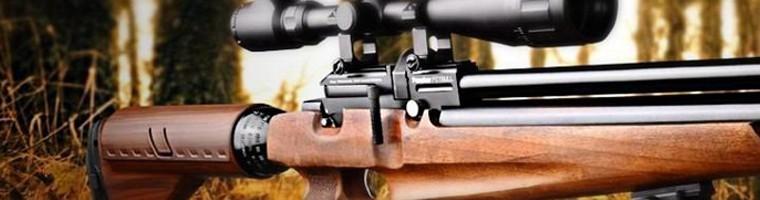 Armas de aire comprimido - Armería el Pinsapar